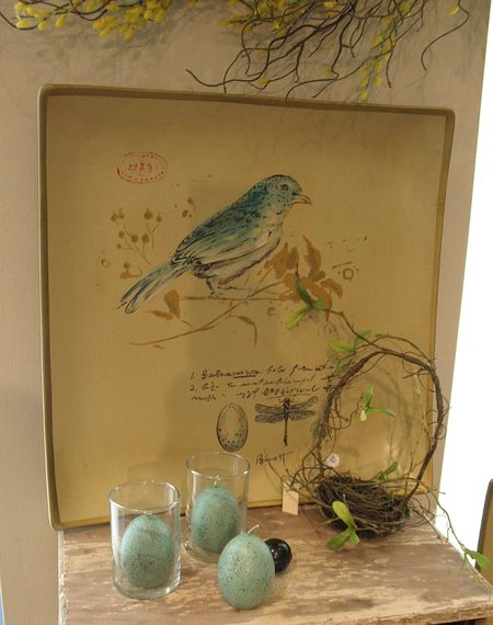 BIRDplate