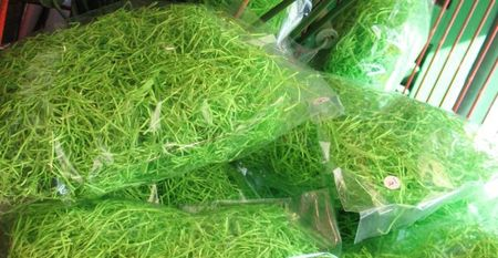 Eastergrass